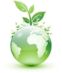 Best green Business