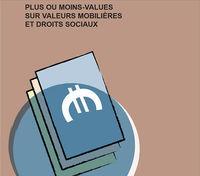 PLUS VALUES Budget 2013. Logo